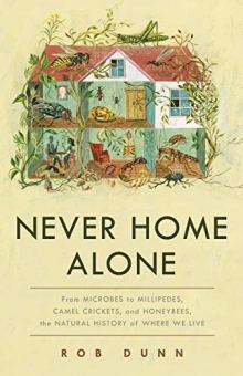 Cover of Never Home Alone
