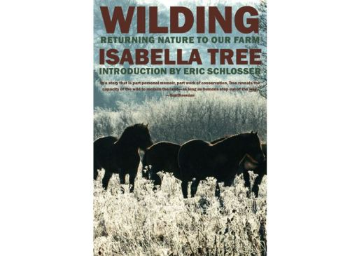 Cover of Wilding