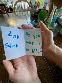 Friends zine: 2nd step - Do you want to play