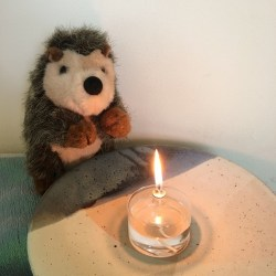 Toy hedgehog lit by the glow of a flaming chalice sitting on a low table