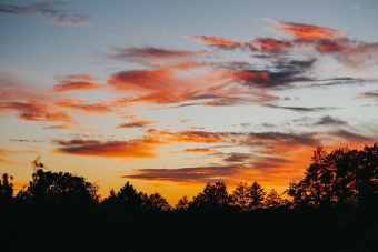 Sunset sky with wispy clouds and tree silhouettes at the bottom of the frame