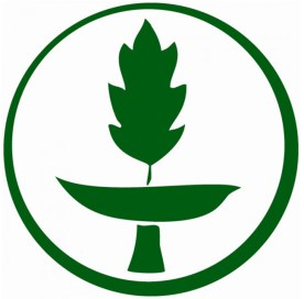 green sanc