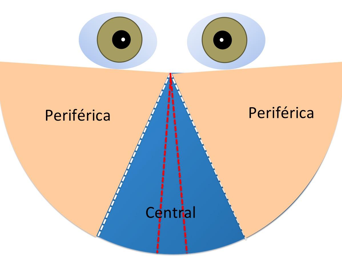 Importancia de la visin binocular  Importancia de la