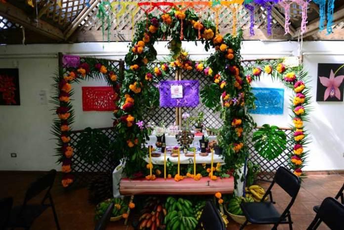 El Orquidario UV dedicó altar de Día de Muertos a la investigadora Silvia del Amo Rodríguez, especialista en