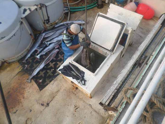 El joven tuvo la experiencia de navegar en un barco pesquero durante tres meses