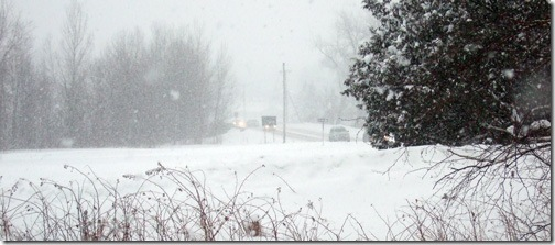 snowy-rt15