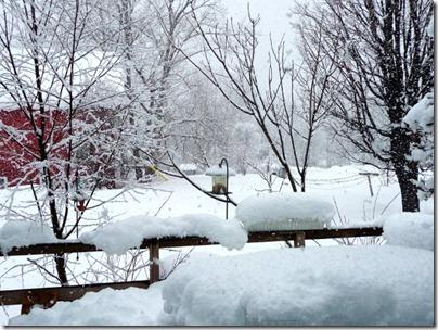 snowday-02