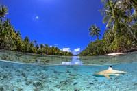 Französisch Poynesien-Südsee-172