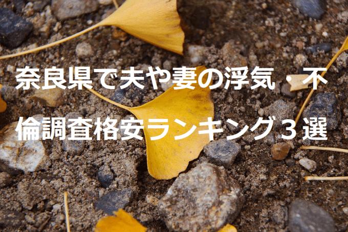 奈良県で夫や妻の浮気・不倫調査格安ランキング3選