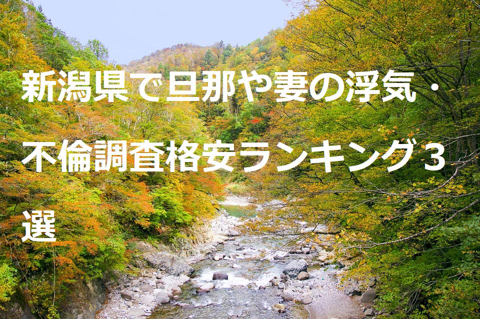 新潟県で旦那や妻の浮気・不倫調査格安ランキング3選