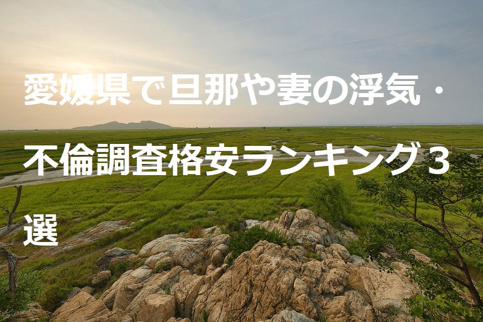 愛媛県で旦那や妻の浮気・不倫調査格安ランキング3選
