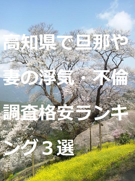 高知県で旦那や妻の浮気・不倫調査格安ランキング3選