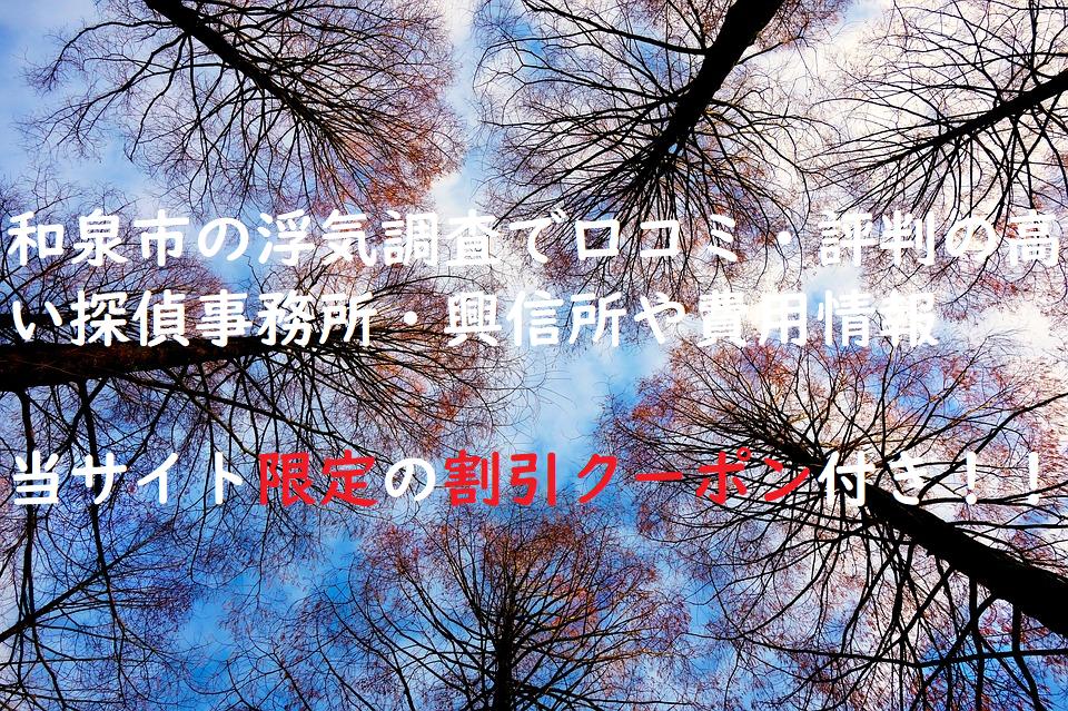 和泉市の浮気調査で口コミ・評判の高い探偵事務所・興信所や費用情報