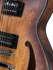hollow-body elektrische gitaar