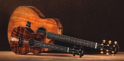 Ukelele gitaar