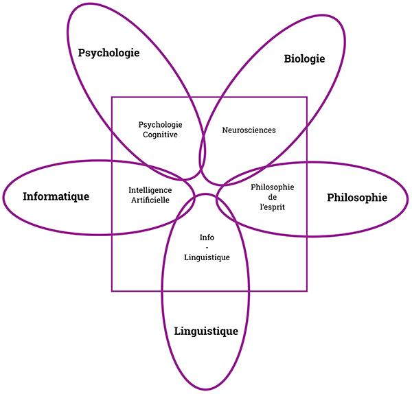 Schéma Sciences Cognitives