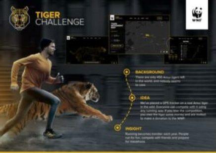 wwf-wwf-tiger-challenge-600-98133