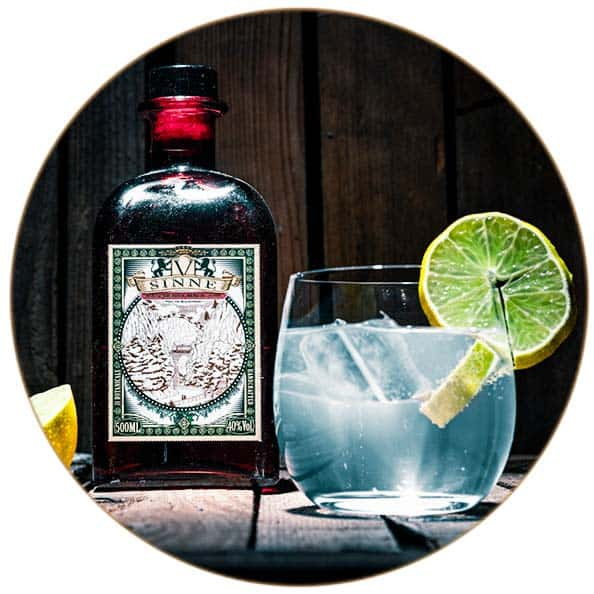 V-SINNE Raspberry Gin Tonic