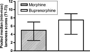 A comparison of epidural buprenorphine plus detomidine