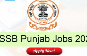 punjab sssb recruitment