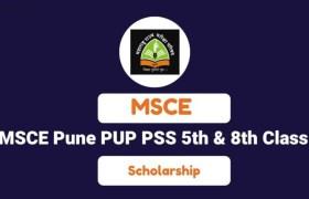 msce pune scholarship answer key