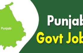 punjab pwrmdc recruitment