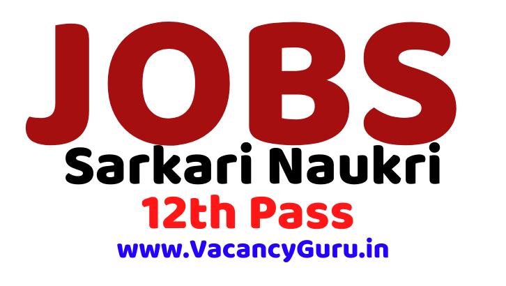 Sarkari Naukri, NCL Technician Recruitment 2020, Technician, Assistant Foreman, Govt Jobs Vacancy, सरकारी नौकरी