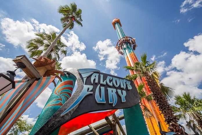 Una delle attrazioni del parco Busch Gardens Tampa in Florida