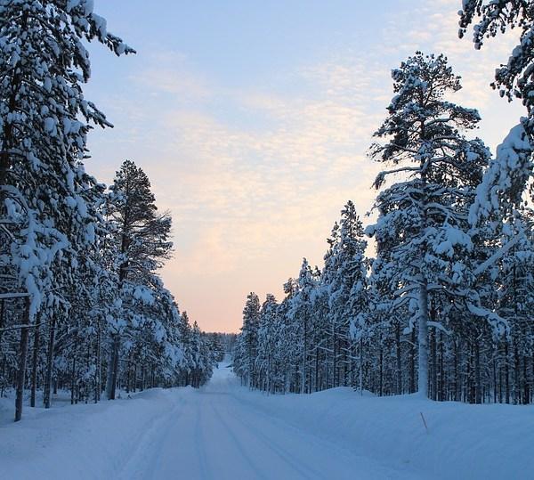 Finlandia Aurora Boreale – Trekking di gruppo