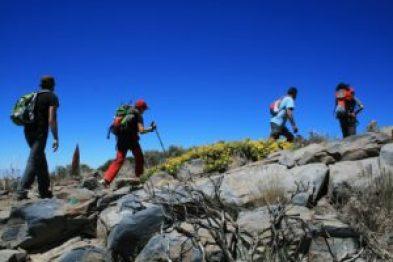 canarie trekking gruppo e da soli