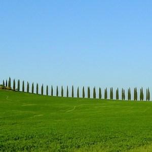 BOLOGNA - FIRENZE: LA VIA DEGLI DEI - Vacanze Singolari
