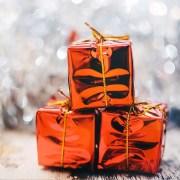 A Natale regala un buono viaggio