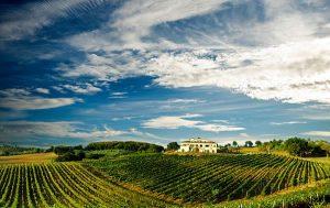 scoprire l'umbria in wine touring