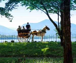 Jaunting Car Killarney