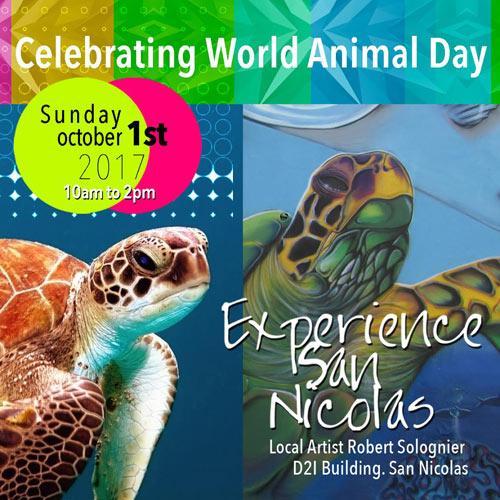 experience san nicolas world animal day