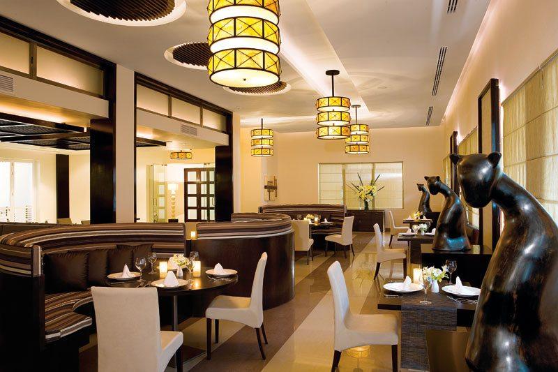 Enjoy gourmet Mediterranean cuisine at Ratatouille.