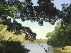 Pfaueninsel