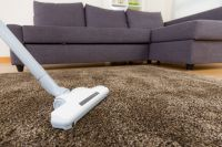 Best Vacuum For Plush Carpet - Guide and Reviews