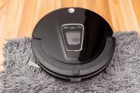 Roomba Carpet | Two Birds Home