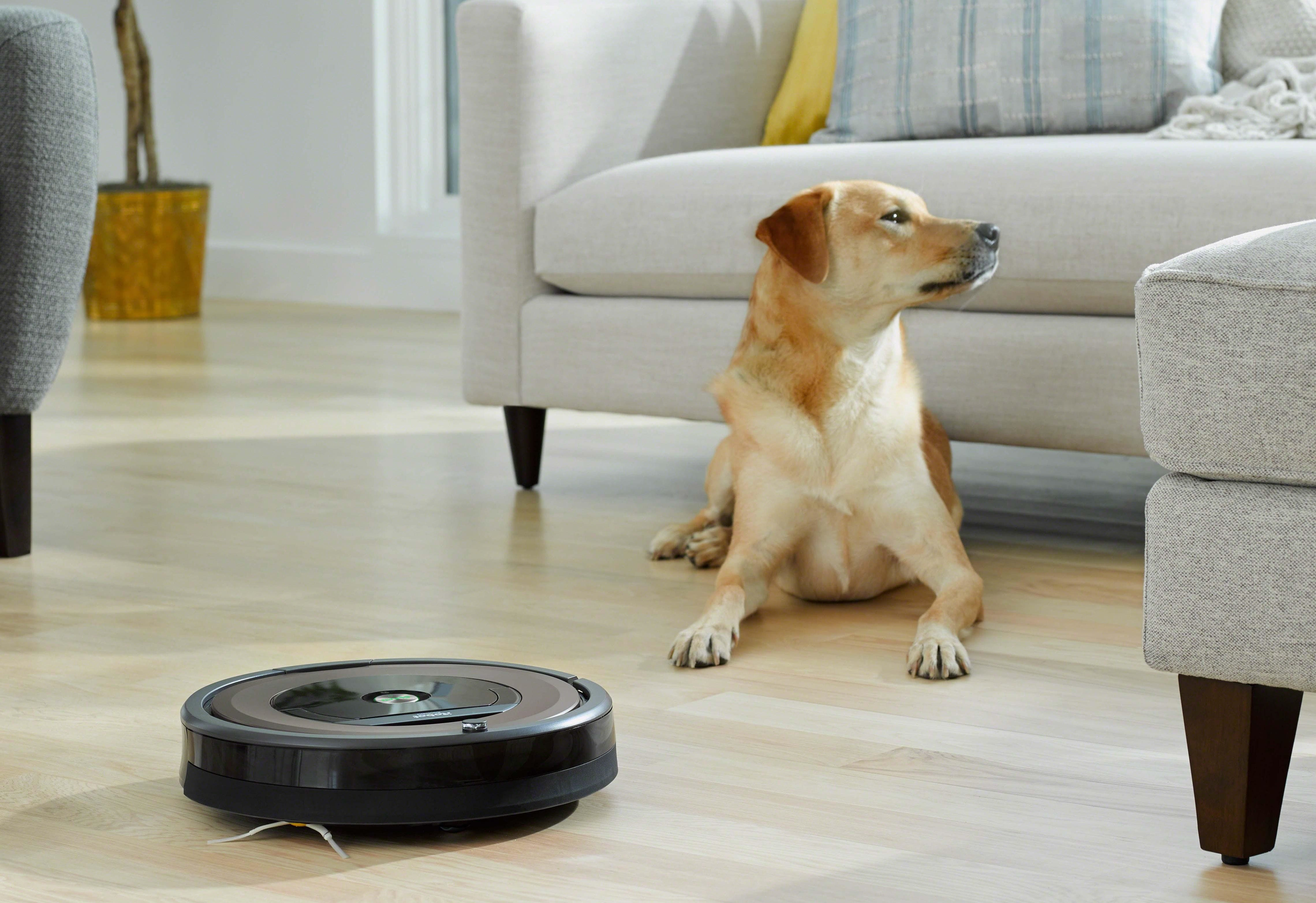 Whats the Best Roomba for Pet Hair in 2018 Top Models