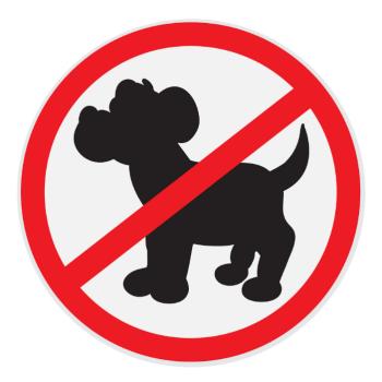 No pet rule