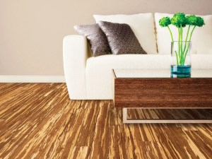 Bamboo flooring reviews – advantages and disadvantages