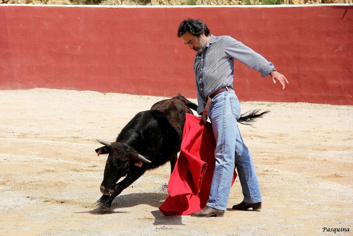 Lucio Sandín volvió a torear
