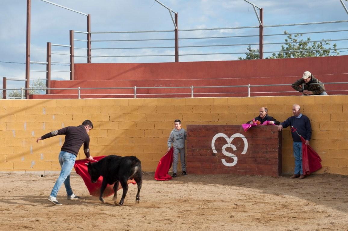 9_Bullfighting school of Catalonia.jpg