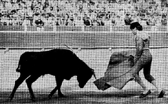 Salvador Vilallonga: el torero rebelde