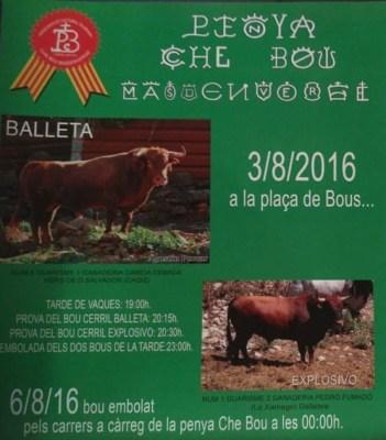 Cartell de la Penya Che Bou que anuncia els actes del 2016 a Masdenverge