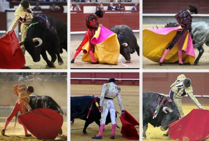 ¿Cuántos toreros reconoces por su forma de torear?