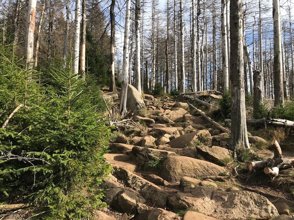 De Brocken en het rotsenpad
