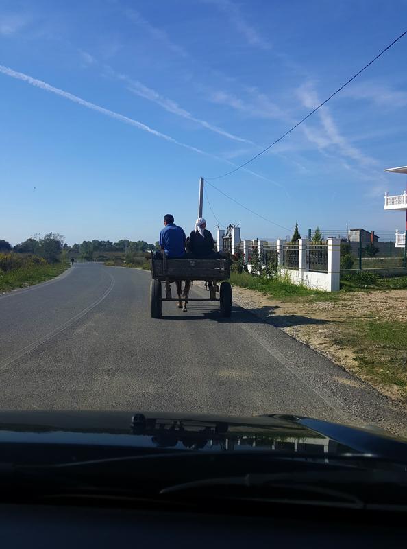 Vacanze in Albania lowcost carretto sulla strada per kepi i rodonit