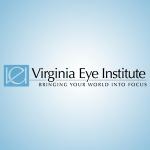 """VEI """"bringing your world into focus"""" logo"""